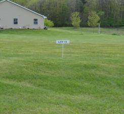 Lot 13 Nelson Drive, Elmwood, WI 54740 (#5737536) :: Twin Cities Elite Real Estate Group | TheMLSonline