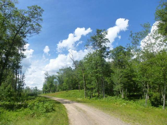 4&5 Red Oak Drive, Hackensack, MN 56452 (#5740448) :: The Preferred Home Team