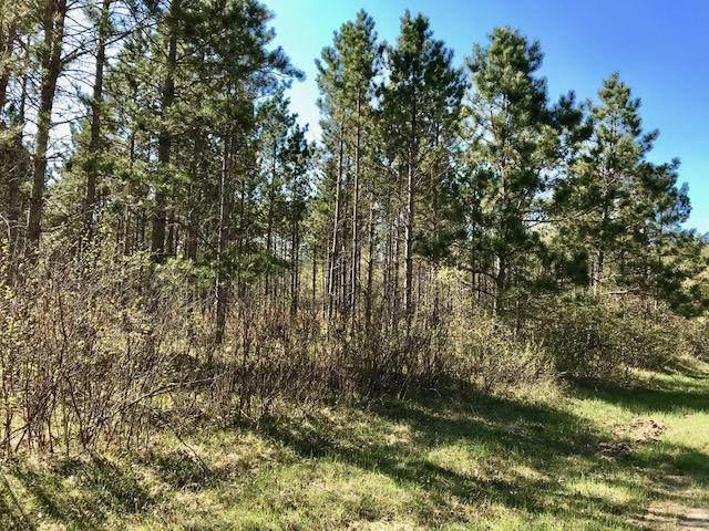 XXX Star Lake Drive, Pequot Lakes, MN 56472 (#5740526) :: Lakes Country Realty LLC