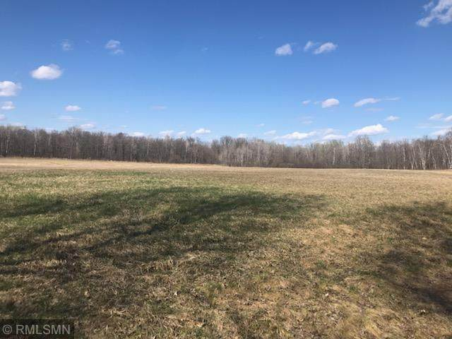 TBD 360th Street, Ford Twp, MN 55051 (#5751062) :: Servion Realty