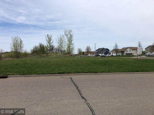 26xxx Old Town Rd, Elko New Market, MN 55054 (#5753346) :: Lakes Country Realty LLC