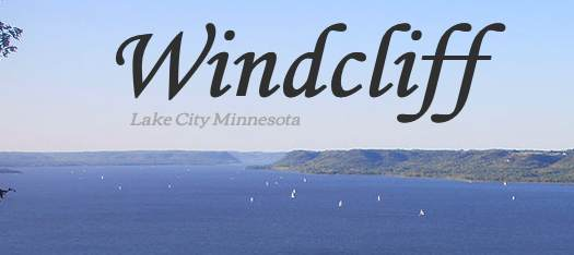 xxx Windcliff Place, Lake City, MN 55041 (#5755535) :: The Twin Cities Team