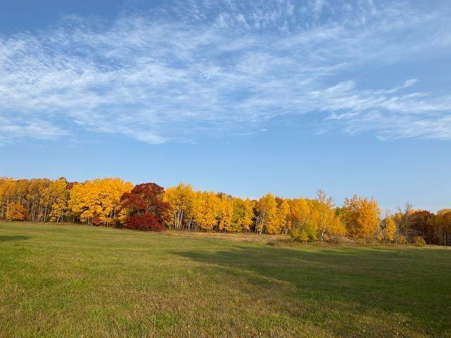 xxxx 58th Avenue, Bungo Twp, MN 56474 (#5757086) :: Bos Realty Group