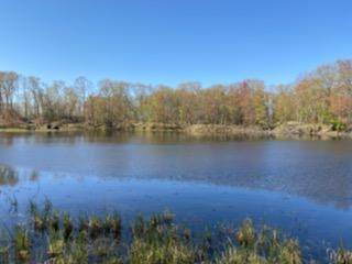 x 182nd Avenue, Comstock, WI 54826 (#5757359) :: Bos Realty Group