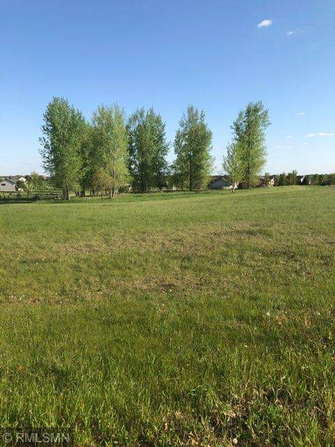 1425 146th Avenue, Richmond Twp, WI 54017 (#5760386) :: Twin Cities Elite Real Estate Group | TheMLSonline