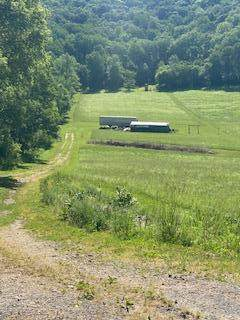 1957 Town Hall Road, La Crescent, MN 55947 (#6007779) :: Happy Clients Realty Advisors