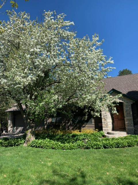 111 Wayside Road W, Hopkins, MN 55343 (#6010207) :: Bre Berry & Company