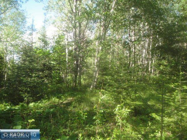 TBD E Mud Creek Road, Ely, MN 55731 (#6013889) :: Holz Group