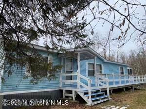 48486 Marilou Drive, Ponsford, MN 56575 (#6030410) :: Lakes Country Realty LLC
