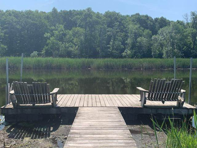 15016 Hidden River Drive, South Haven, MN 55382 (#6071510) :: The Michael Kaslow Team