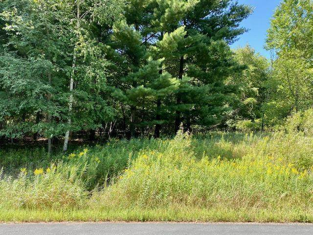 19320 Meadowridge Trail N, Scandia, MN 55047 (#6094251) :: Holz Group