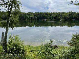 1130 Whitley Point Lane NE, Outing, MN 56662 (#6102192) :: The Janetkhan Group