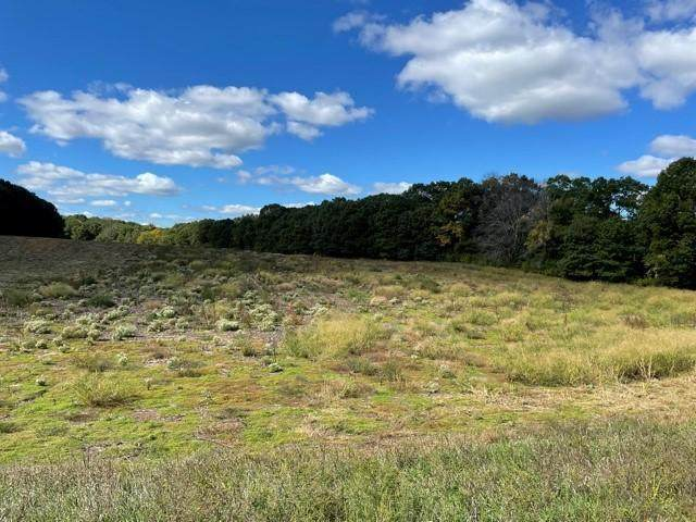 xxxxx Lot 4 325th Avenue NW, Spencer Brook Twp, MN 55371 (#6103789) :: Reliance Realty Advisers
