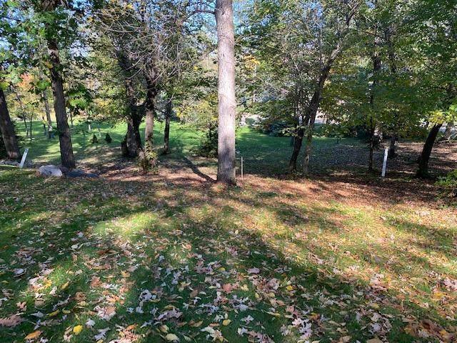 XXX Basswood Trail, Glenwood, MN 56334 (#6112465) :: The Michael Kaslow Team