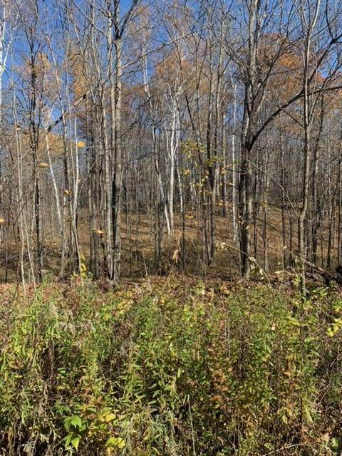 TBD Co. Rd. 455, Grand Rapids, MN 55744 (#6116973) :: Lakes Country Realty LLC