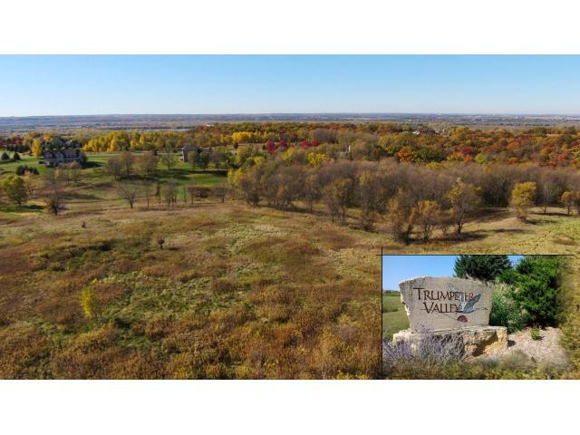 Lot 4 & 5 1130th Street, Prescott, WI 54021 (#4178031) :: The Preferred Home Team