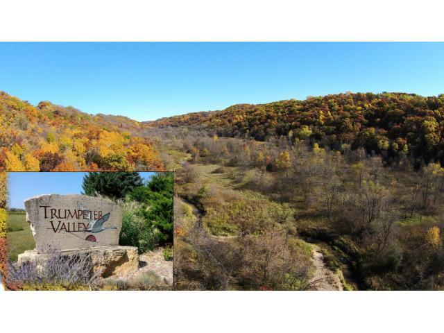 Lot 90 457th Avenue, Oak Grove Twp, WI 54021 (#4178057) :: The Preferred Home Team