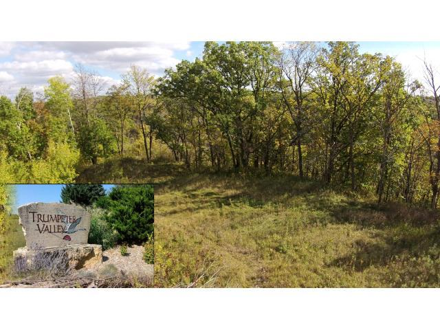 Lot 94 457th Avenue, Oak Grove Twp, WI 54021 (#4178064) :: The Preferred Home Team