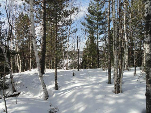 5987 Voyageurs Trail - Photo 1