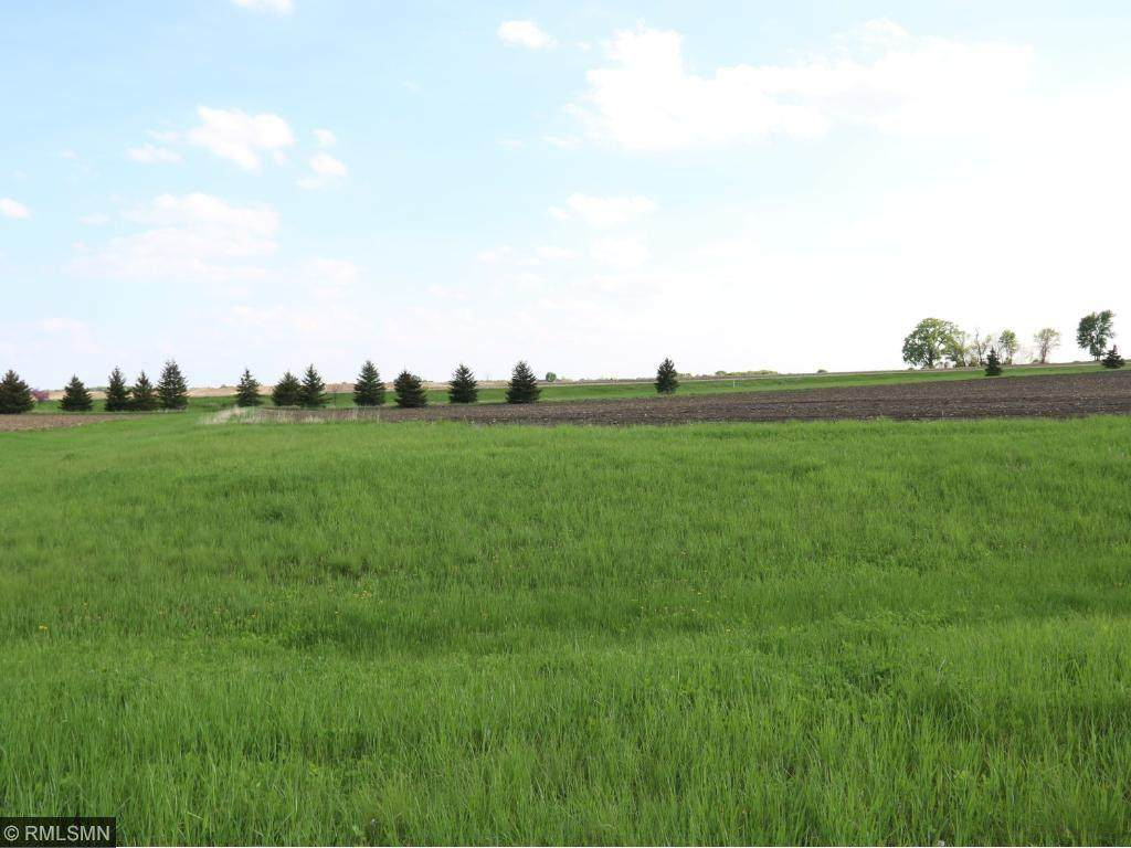29957 Prairie Sage Lane - Photo 1