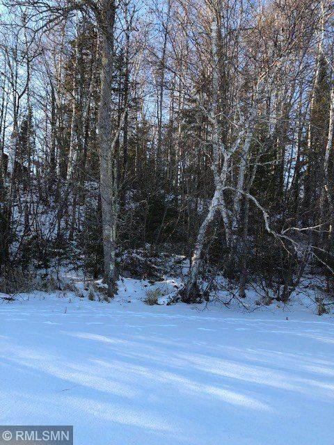 1504 Island Lake Drive - Photo 1