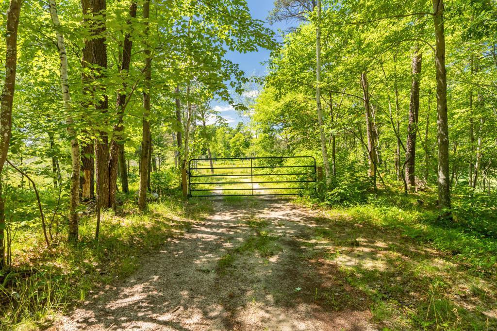 TBD Patterson Trail - Photo 1