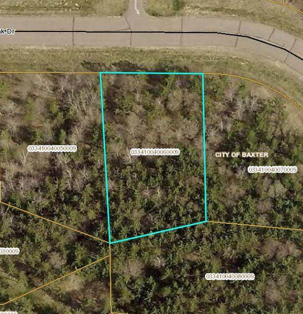 L6 B4 Savannah Oak Drive, Baxter, MN 56425 (#5208255) :: Twin Cities South