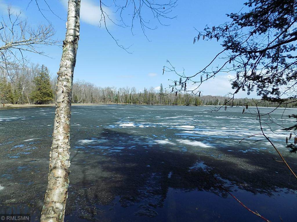 TBD Big Too Much Lake Road - Photo 1