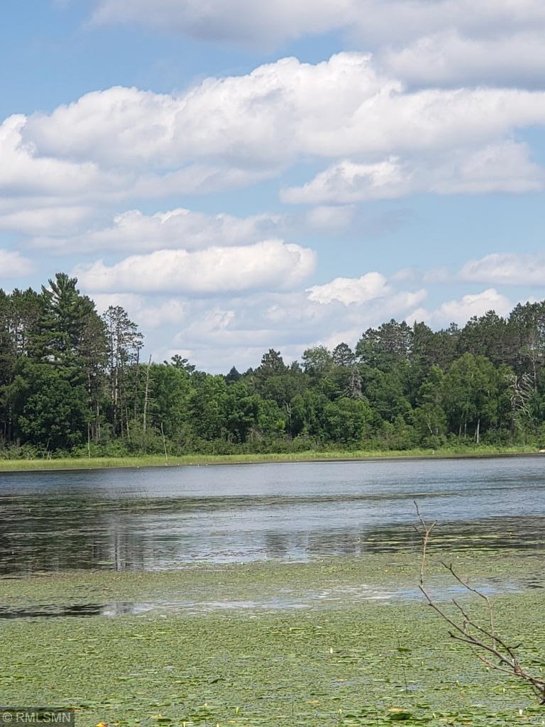 xxx Fools Lake Drive - Photo 1