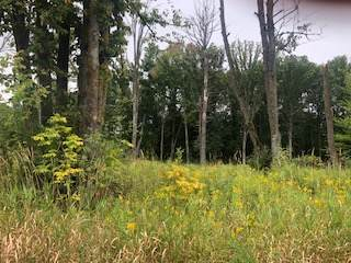 Lot 40 Sunflower Way, Amery, WI 54001 (#5290556) :: The Michael Kaslow Team