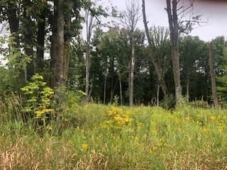Lot 40 Sunflower Way, Amery, WI 54001 (#5290556) :: Holz Group