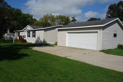 411 Cottrill Street N, Waterville, MN 56096 (#5293718) :: Bre Berry & Company