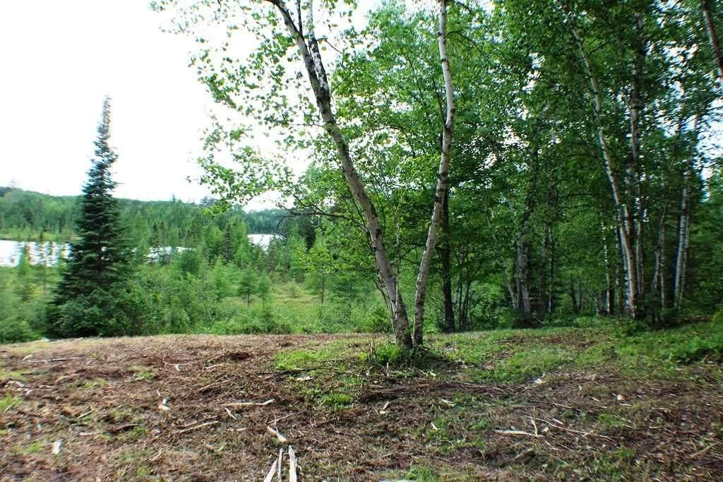 Tract A & B County Rd 52 - Photo 1