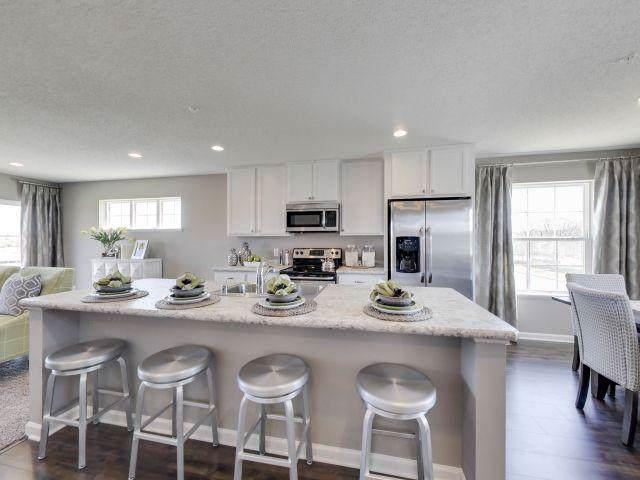 673 Village Drive, Lino Lakes, MN 55014 (#5326321) :: Troy Martenson Group