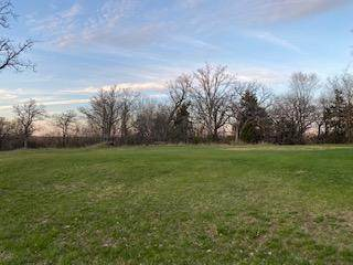 1310 Sunrise Court, Clearwater, MN 55320 (#5472044) :: Holz Group