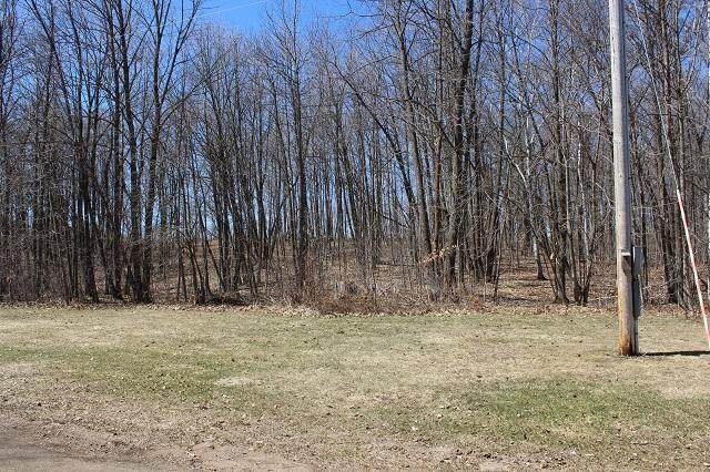 Lot 1 376th Avenue - Photo 1