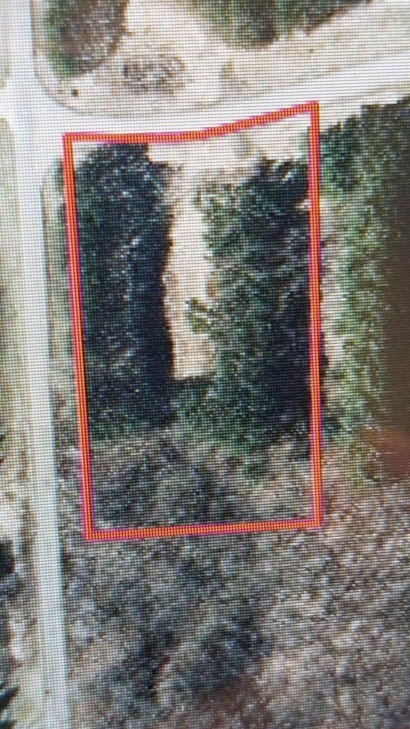 XXX LOT # 42 218th Avenue, Star Prairie Twp, WI 54025 (#5502526) :: Holz Group
