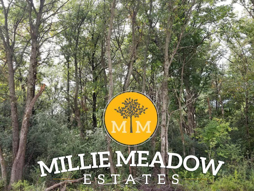 4009 Millie Meadow Drive - Photo 1
