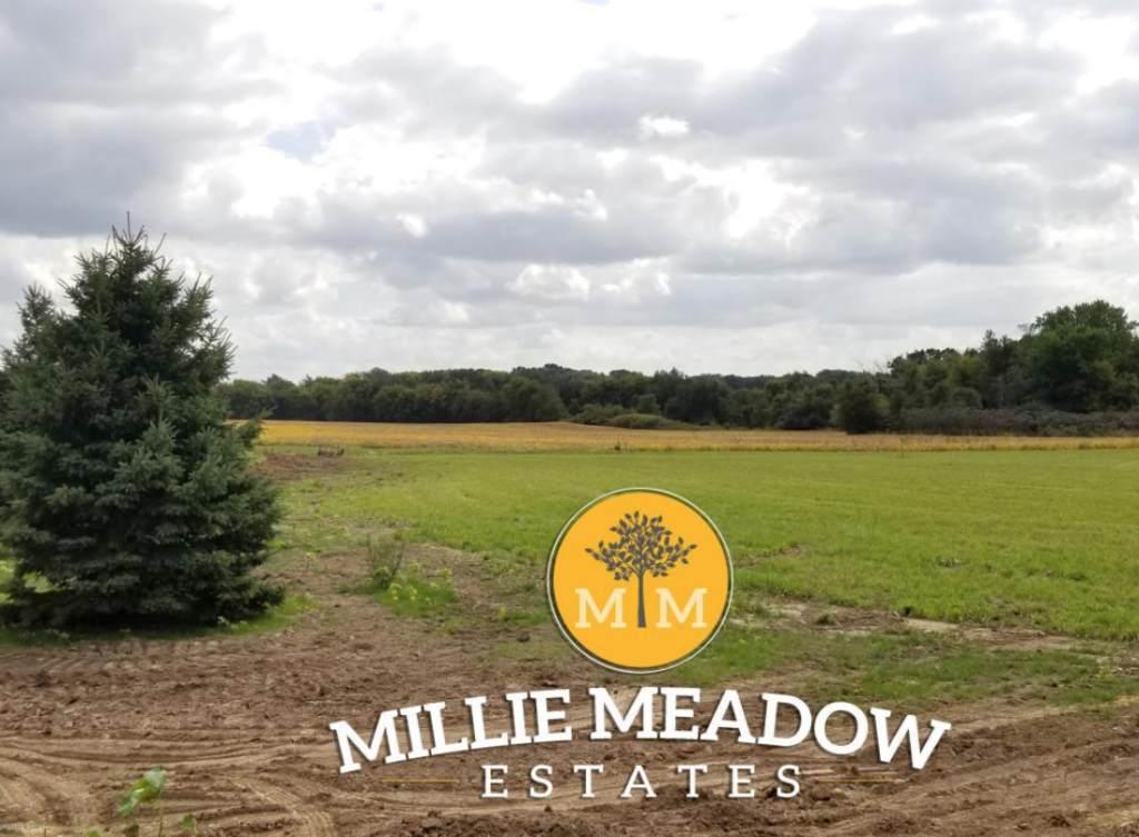 4352 Millie Meadow Drive - Photo 1