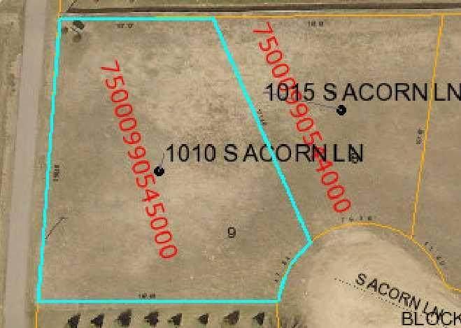 1010 Acorn Lane - Photo 1