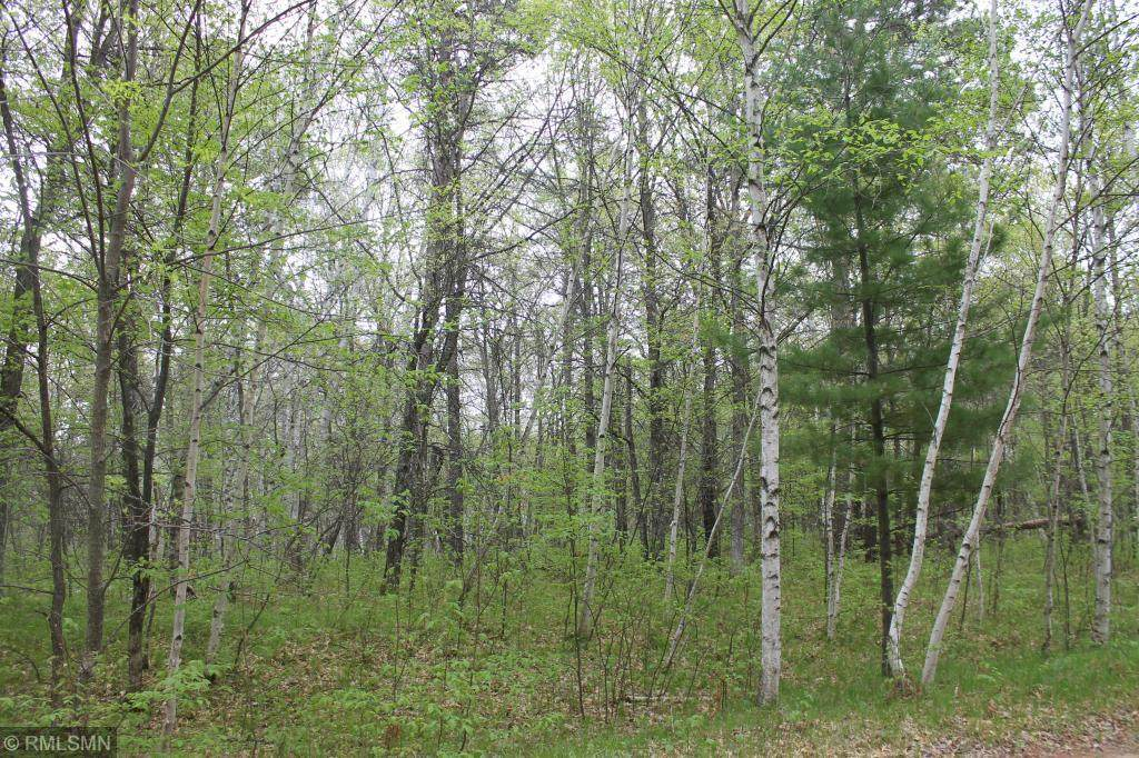 XXX Fawn Forest Lot 10 Road - Photo 1