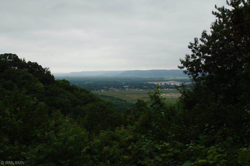 tbd Skyline Drive - Photo 1