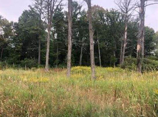 Lot 39 Sunflower Way, Amery, WI 54001 (#5617821) :: The Michael Kaslow Team