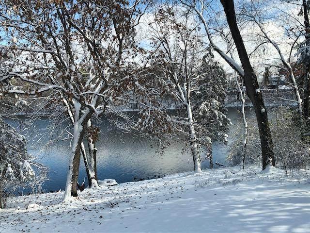 737 Amber Drive, Shoreview, MN 55126 (#5659454) :: Carol Nelson | Edina Realty