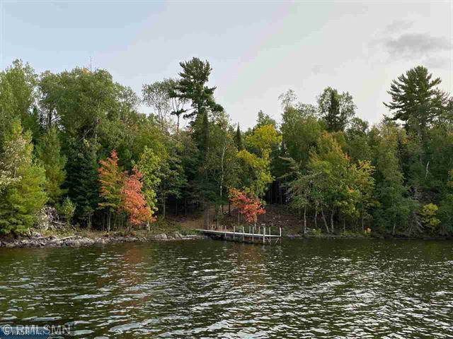 TBD Pine Island, Tower, MN 55790 (#5688951) :: Straka Real Estate