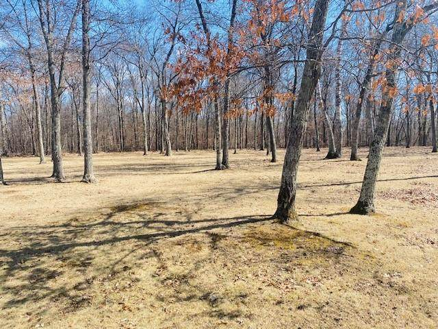 TBD Beaver Drive, Breezy Point, MN 56472 (#5695882) :: The Pietig Properties Group