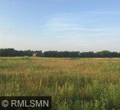 Lot 6 Blk 1 170th Court NE, Columbus, MN 55025 (#5696940) :: The Preferred Home Team