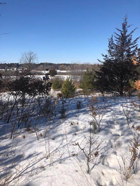 Lot 3 Blk 1 68th Street, Princeton, MN 55371 (#5716938) :: Happy Clients Realty Advisors
