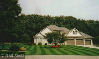 19298 180th Avenue NW, Big Lake, MN 55309 (#5735358) :: Holz Group
