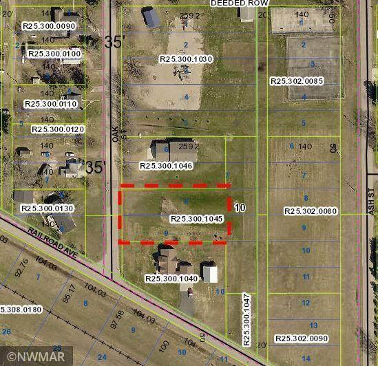 573 Railroad Avenue, Gonvick, MN 56644 (MLS #5738573) :: RE/MAX Signature Properties